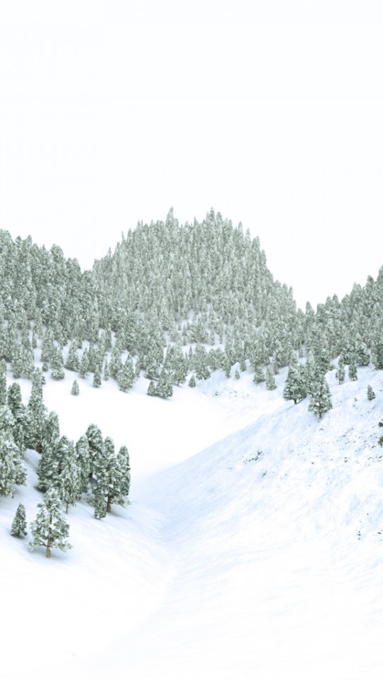Christmas Winter Forest
