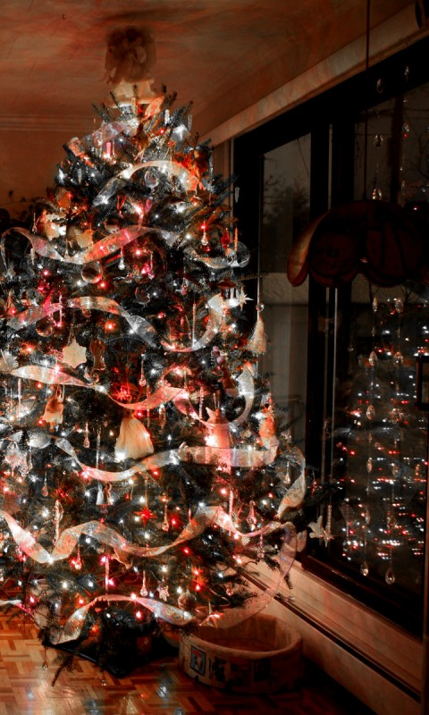 How To Decorate A Christmas Tree 480x800 Wallpaper