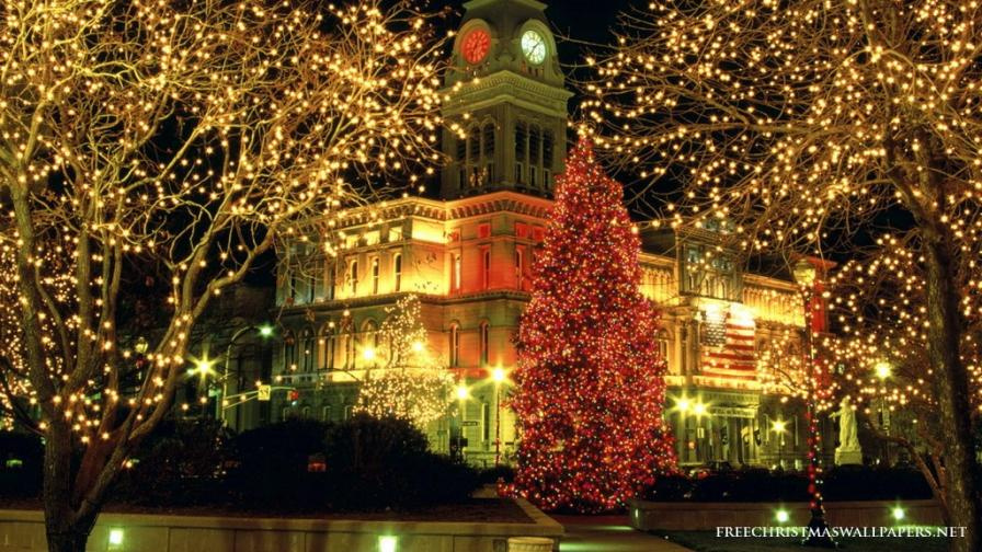 Christmas Louisville Lights