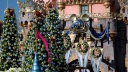 Disneyland Christmas Trees
