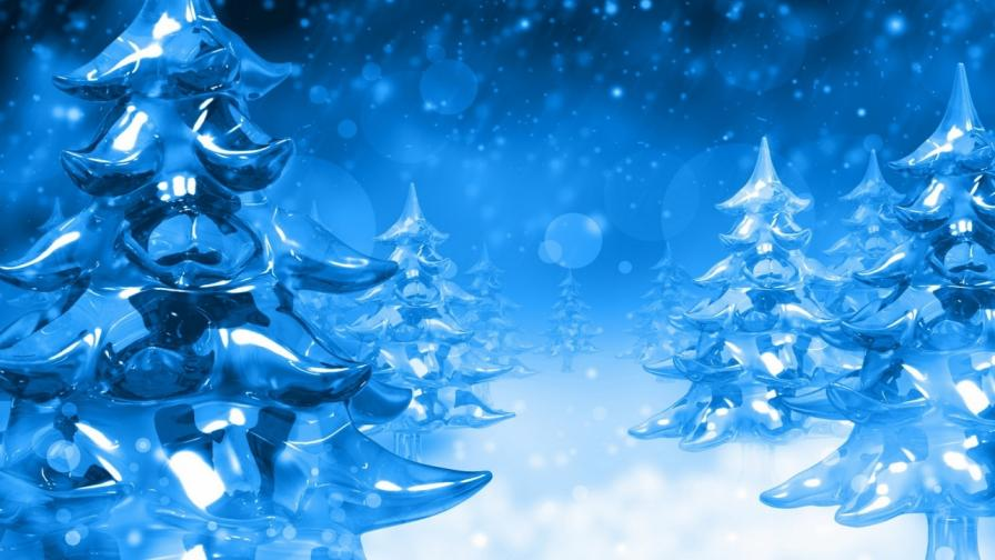 Download Frozen And Icy XmasTrees Wallpaper