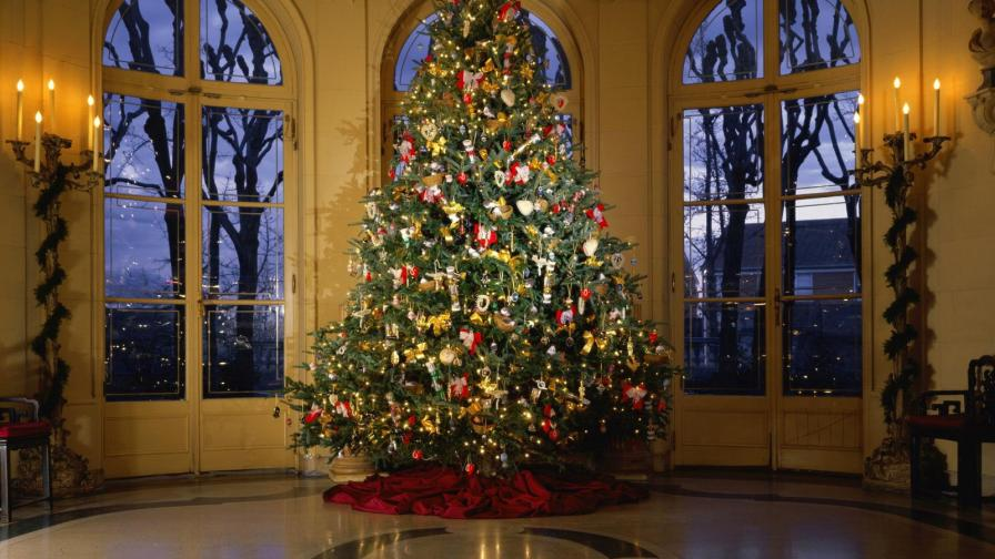 Luxuriant Christmas Tree
