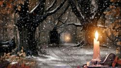 Xmas Snow Nature Candle